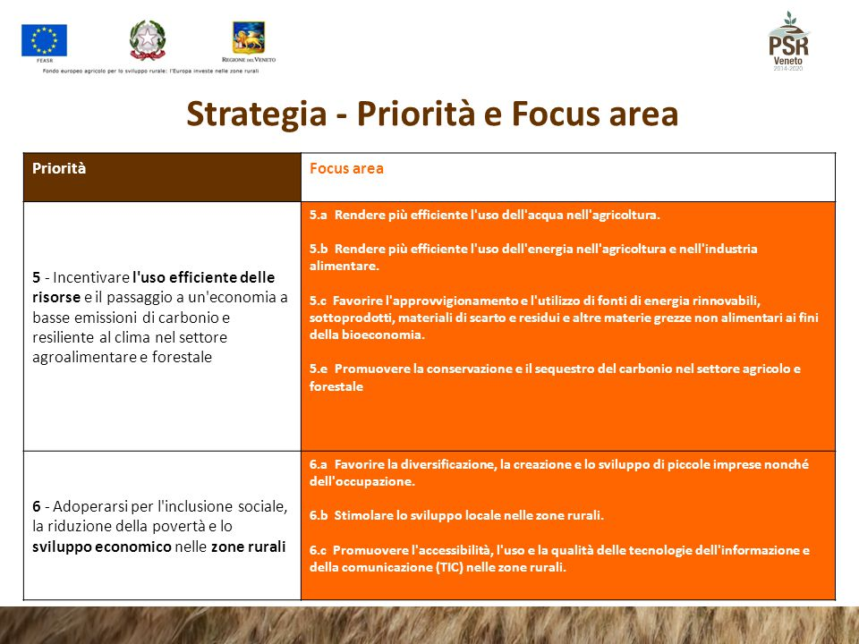 Strategia - Priorità e Focus area