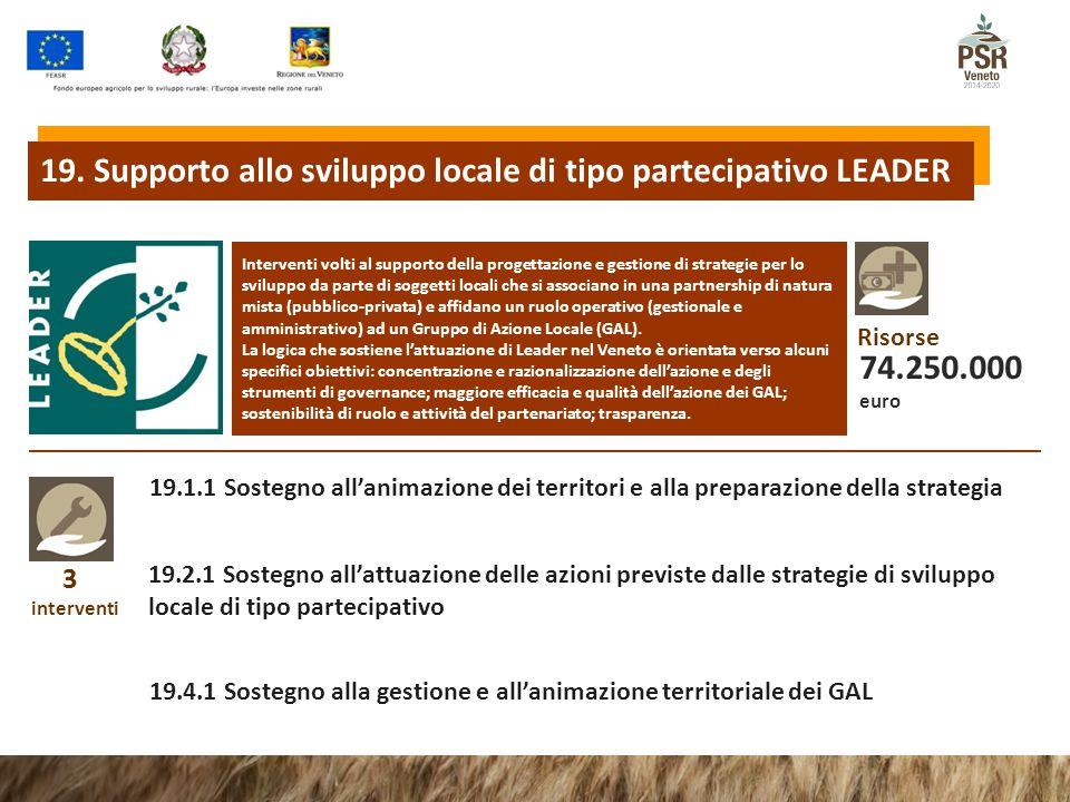 19. Supporto allo sviluppo locale di tipo partecipativo LEADER