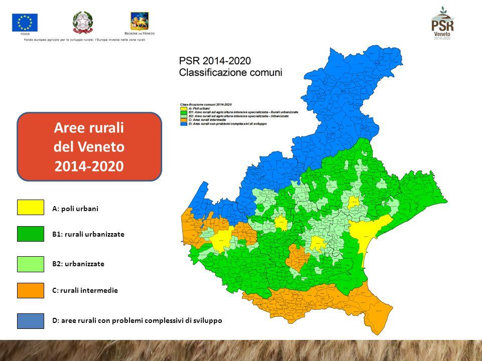 Aree rurali del Veneto 2014-2020
