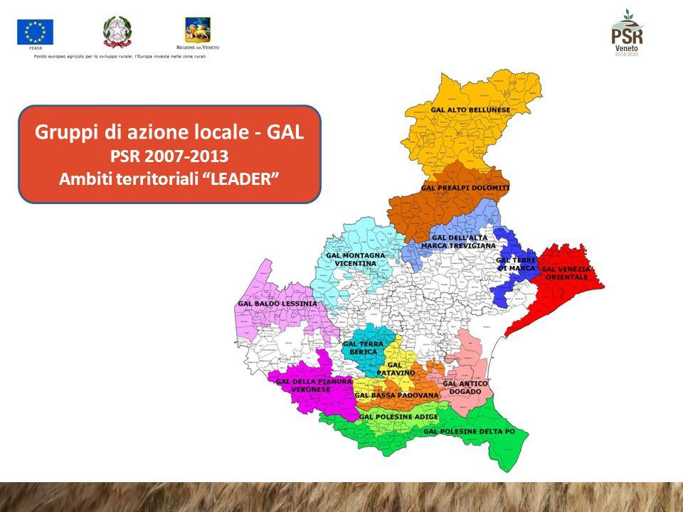 Gruppi di azione locale - GAL Ambiti territoriali LEADER