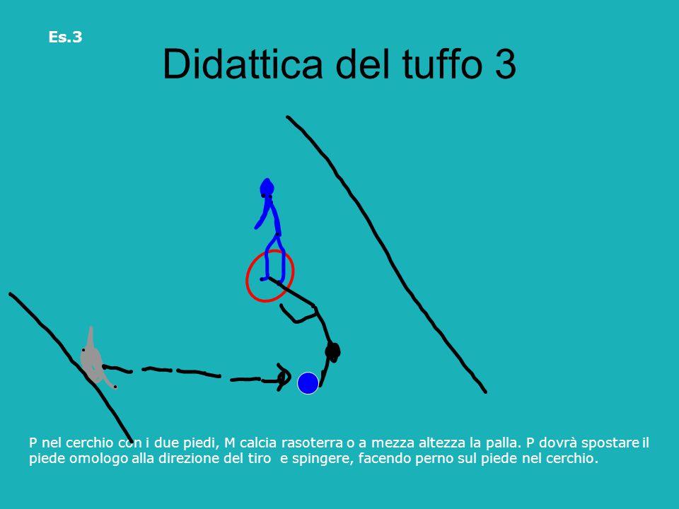Didattica del tuffo 3 Es.3. P nel cerchio con i due piedi, M calcia rasoterra o a mezza altezza la palla. P dovrà spostare il.