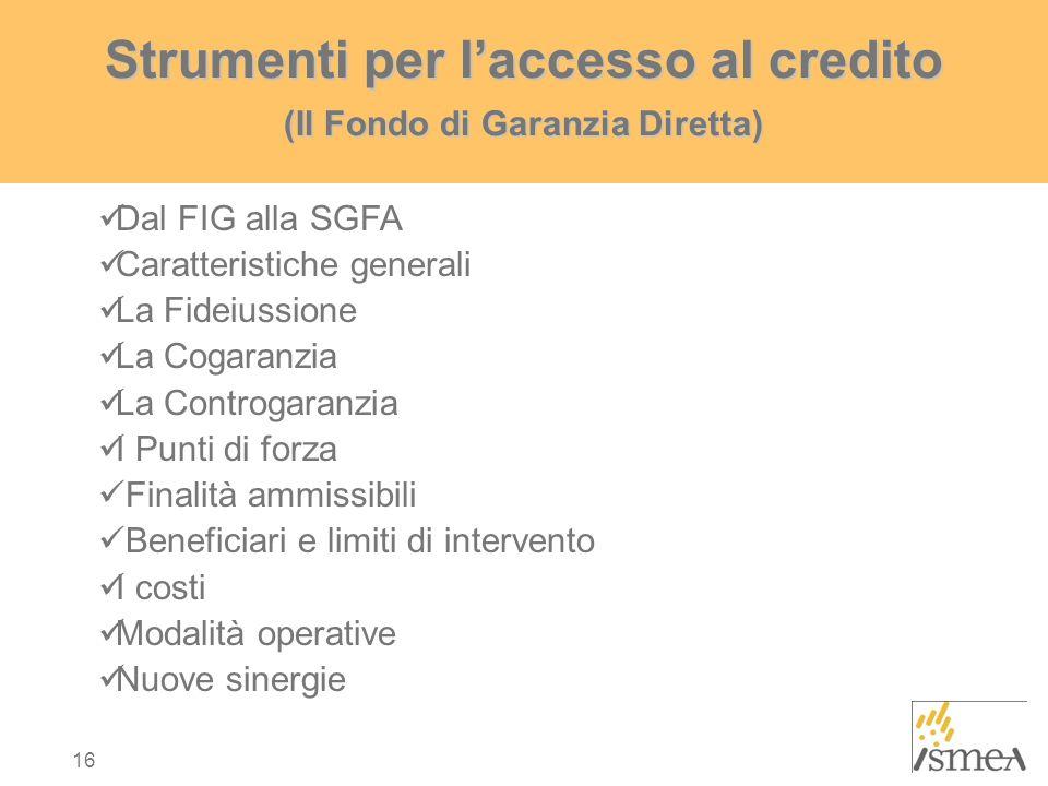 Strumenti per l'accesso al credito (Il Fondo di Garanzia Diretta)