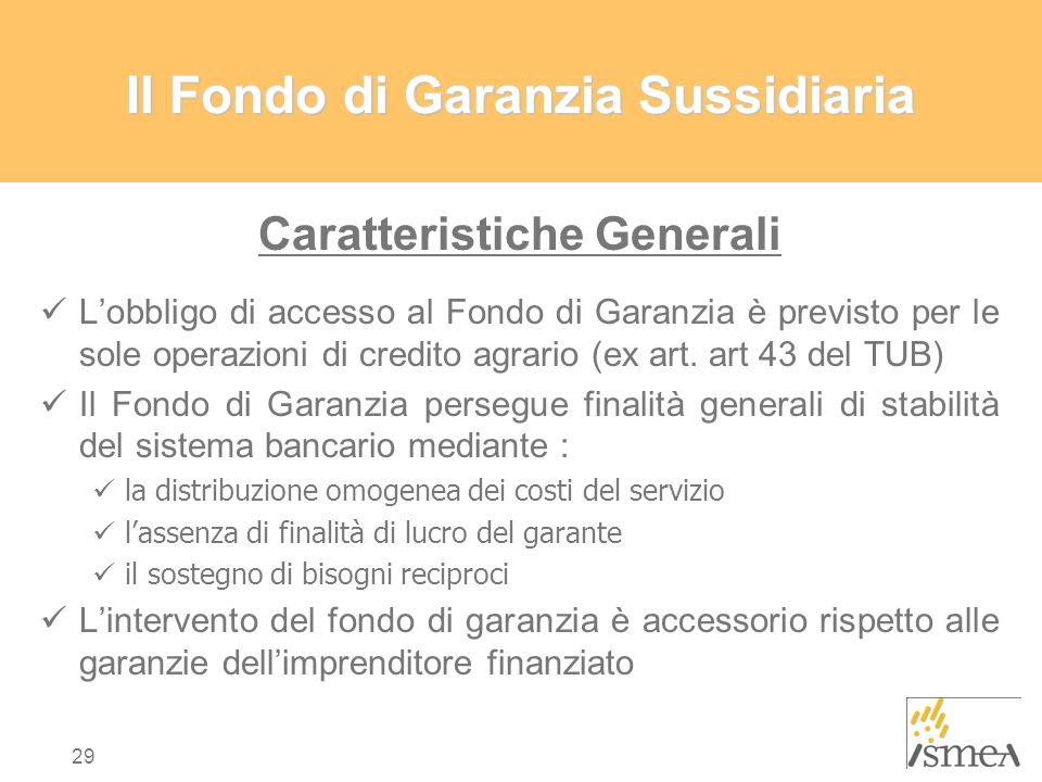 Il Fondo di Garanzia Sussidiaria