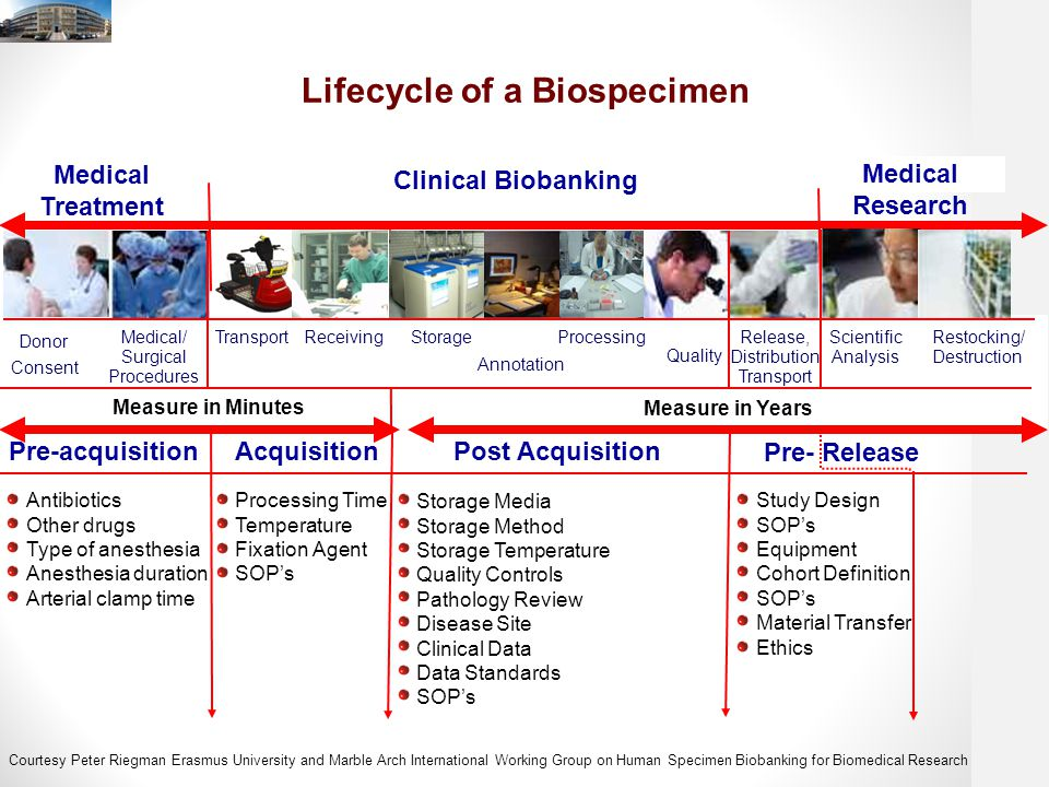 Lifecycle of a Biospecimen