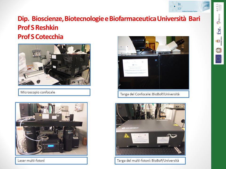 Dip. Bioscienze, Biotecnologie e Biofarmaceutica Università Bari Prof S Reshkin Prof S Cotecchia