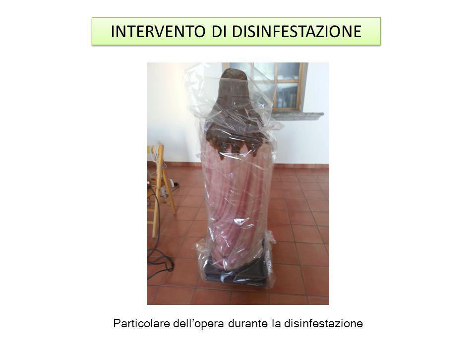 INTERVENTO DI DISINFESTAZIONE