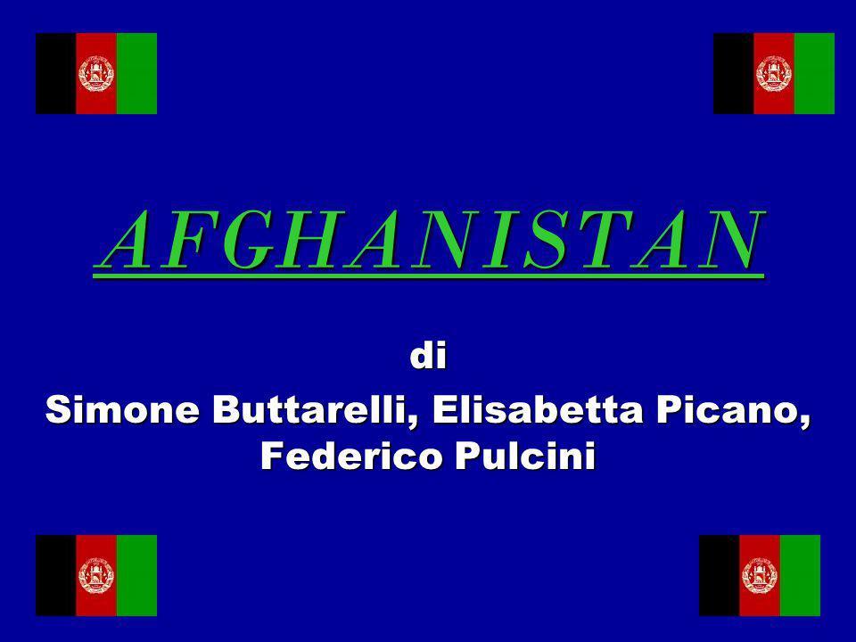di Simone Buttarelli, Elisabetta Picano, Federico Pulcini