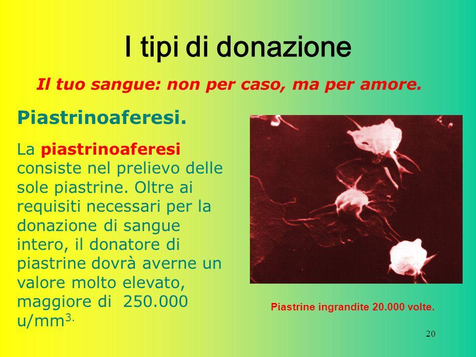 I tipi di donazione Piastrinoaferesi.