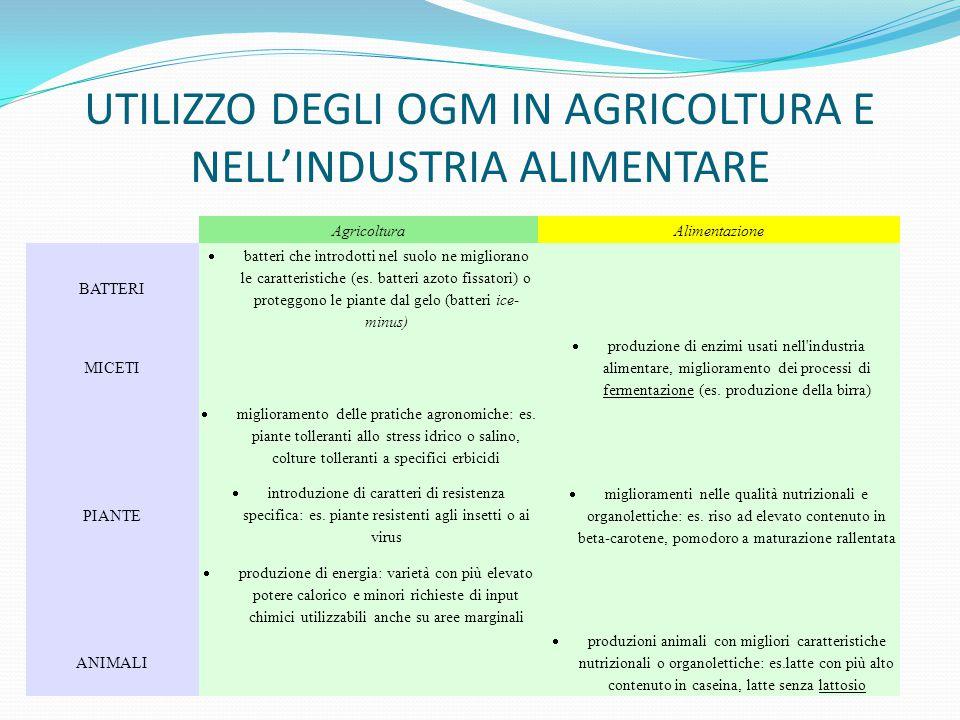 UTILIZZO DEGLI OGM IN AGRICOLTURA E NELL'INDUSTRIA ALIMENTARE