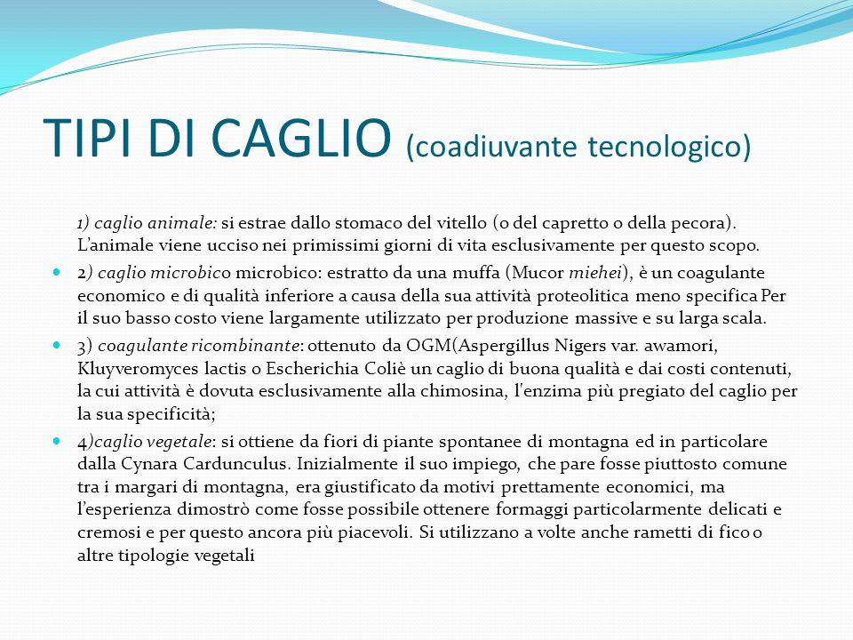 TIPI DI CAGLIO (coadiuvante tecnologico)