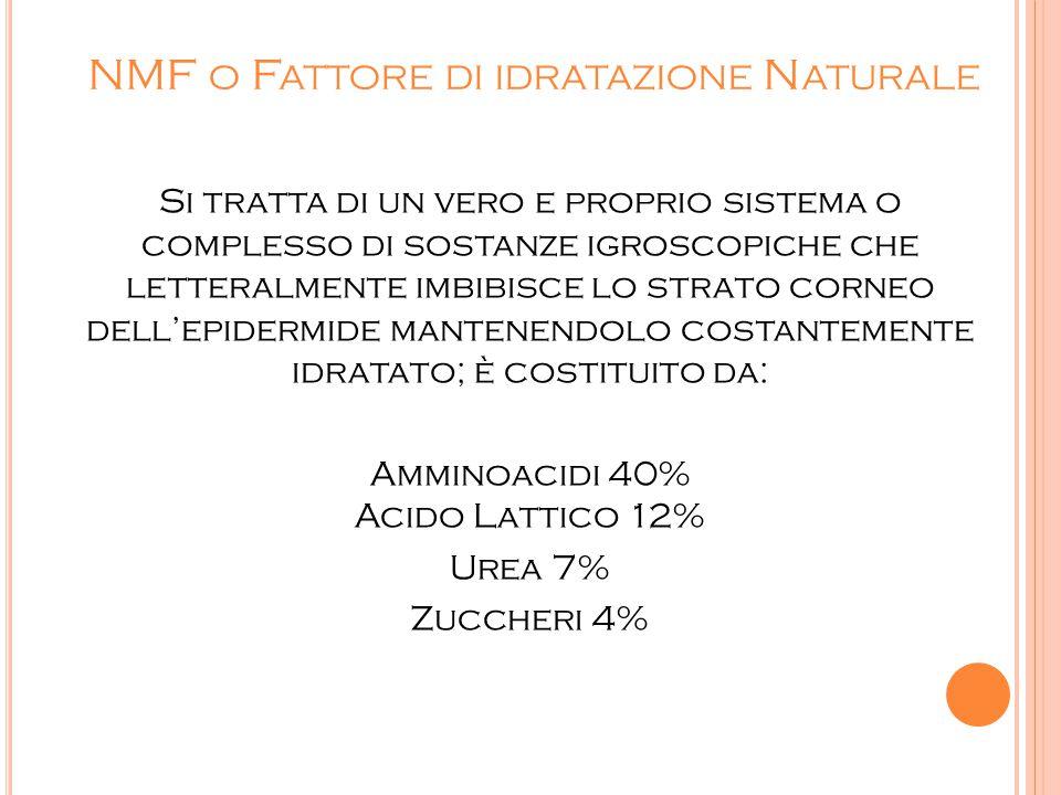 NMF o Fattore di idratazione Naturale