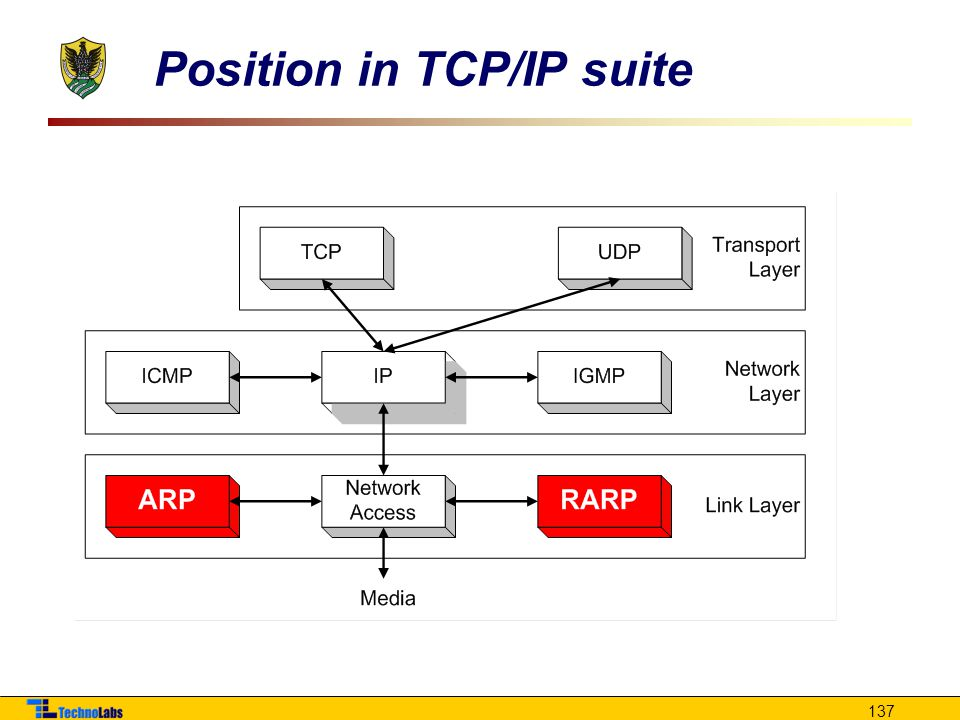 Position in TCP/IP suite