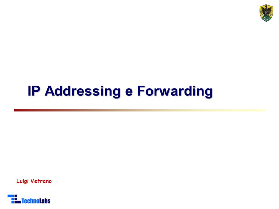 IP Addressing e Forwarding