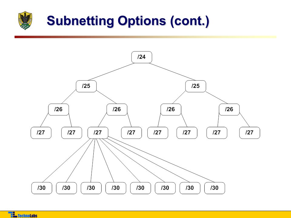 Subnetting Options (cont.)