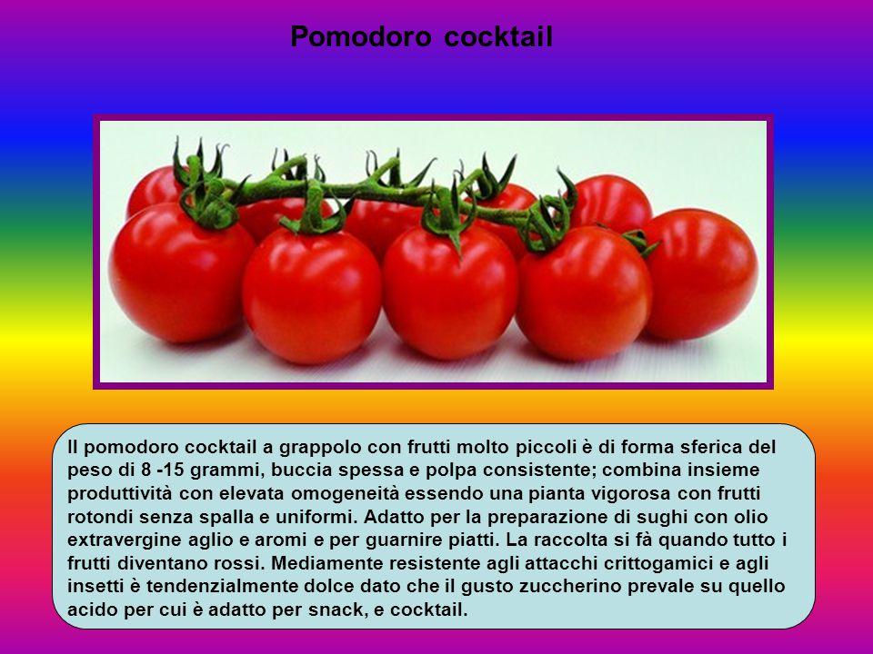 Pomodoro cocktail