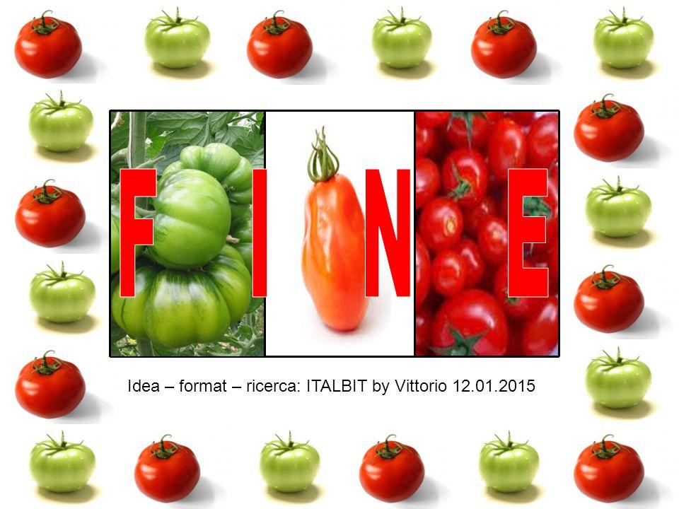 F I N E Idea – format – ricerca: ITALBIT by Vittorio 12.01.2015