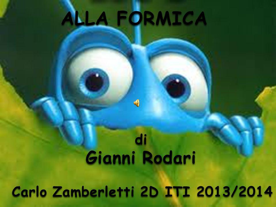 Carlo Zamberletti 2D ITI 2013/2014