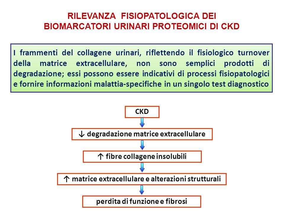 RILEVANZA FISIOPATOLOGICA DEI BIOMARCATORI URINARI PROTEOMICI DI CKD