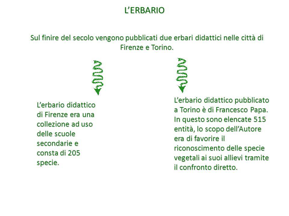L'ERBARIO Sul finire del secolo vengono pubblicati due erbari didattici nelle città di Firenze e Torino.