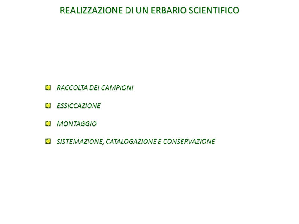 REALIZZAZIONE DI UN ERBARIO SCIENTIFICO