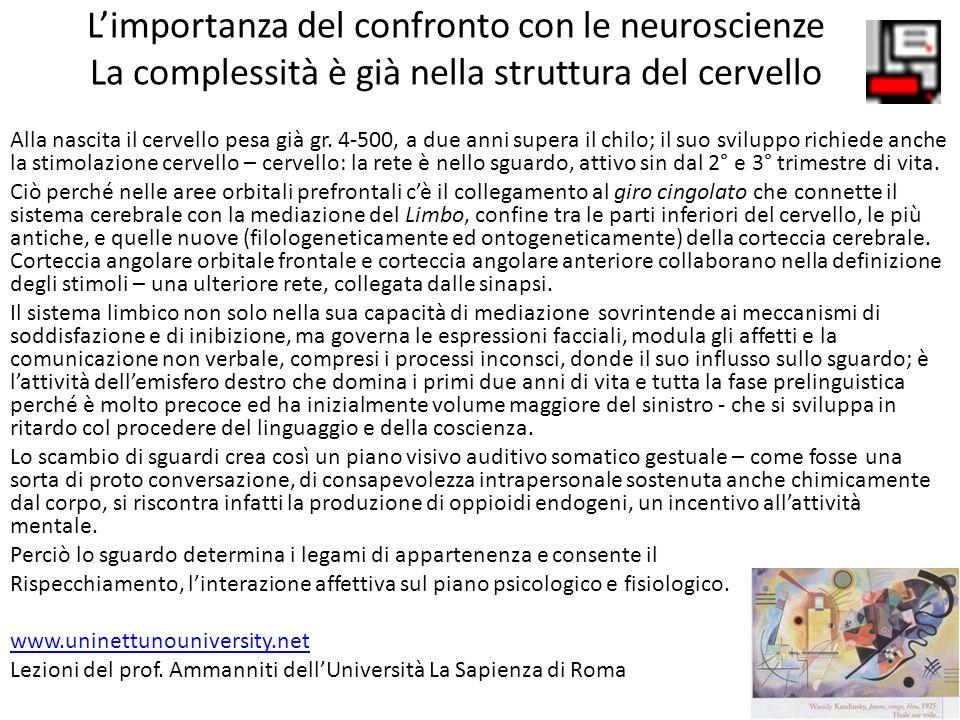 L'importanza del confronto con le neuroscienze La complessità è già nella struttura del cervello