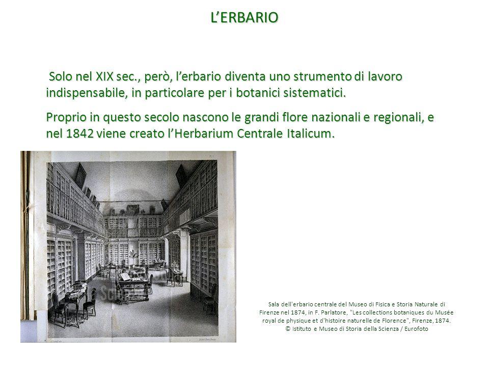 © Istituto e Museo di Storia della Scienza / Eurofoto