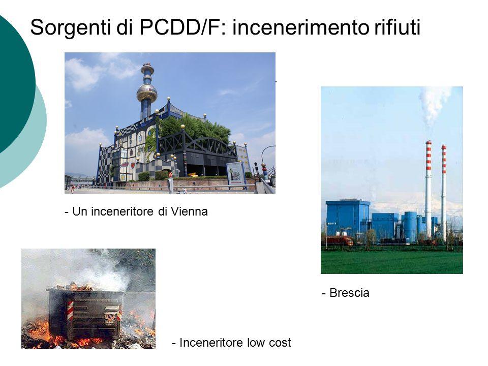Sorgenti di PCDD/F: incenerimento rifiuti