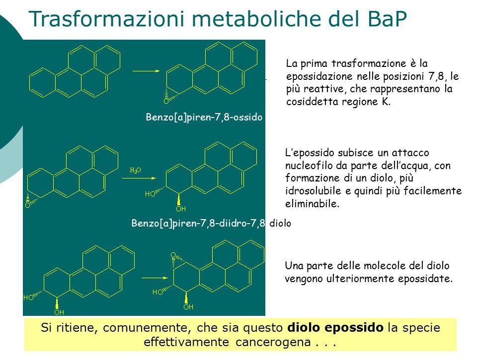 Trasformazioni metaboliche del BaP
