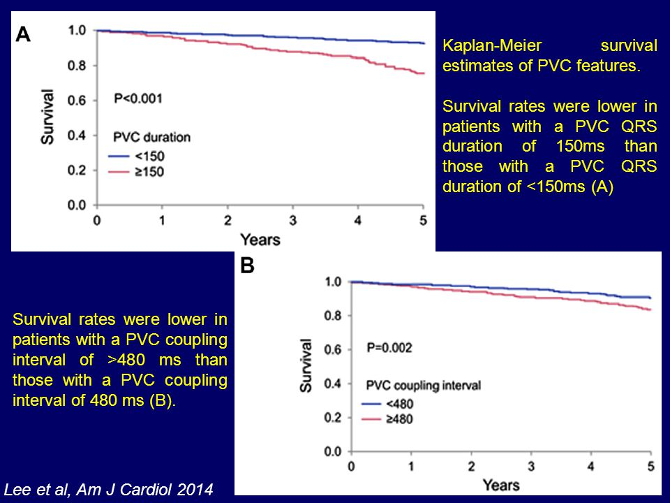 Kaplan-Meier survival estimates of PVC features.