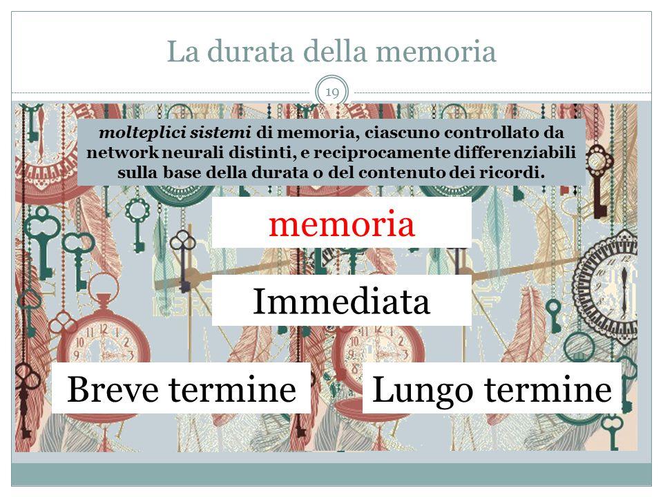 La durata della memoria