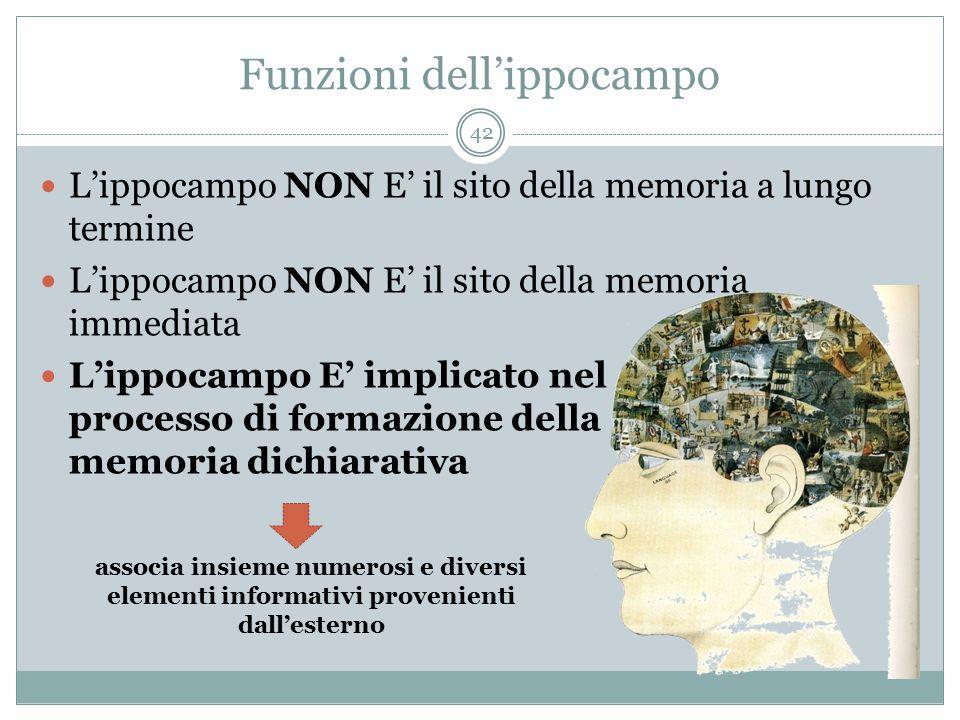 Funzioni dell'ippocampo