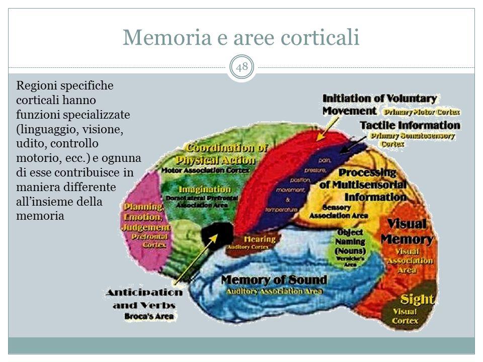 Memoria e aree corticali