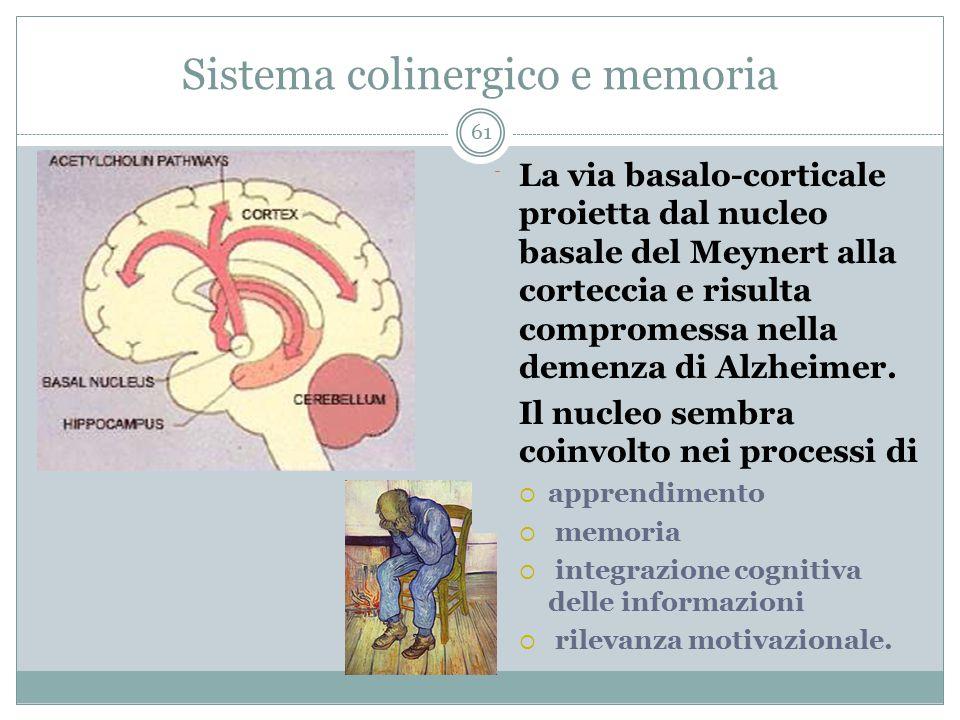 Sistema colinergico e memoria