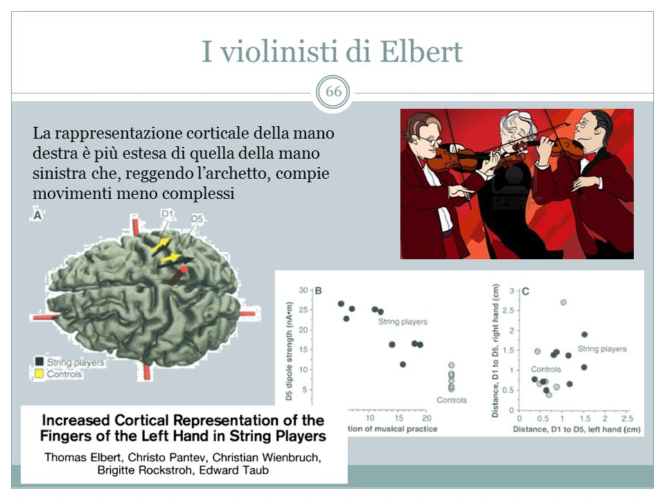 I violinisti di Elbert