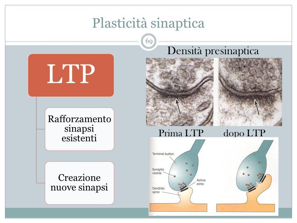 Plasticità sinaptica Densità presinaptica Prima LTP dopo LTP LTP