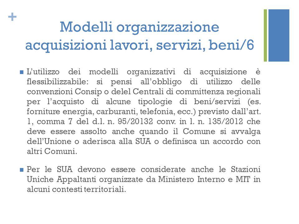 Modelli organizzazione acquisizioni lavori, servizi, beni/6