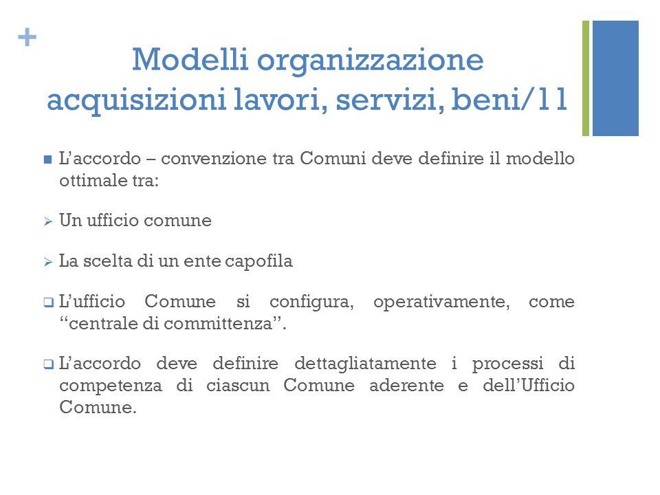 Modelli organizzazione acquisizioni lavori, servizi, beni/11