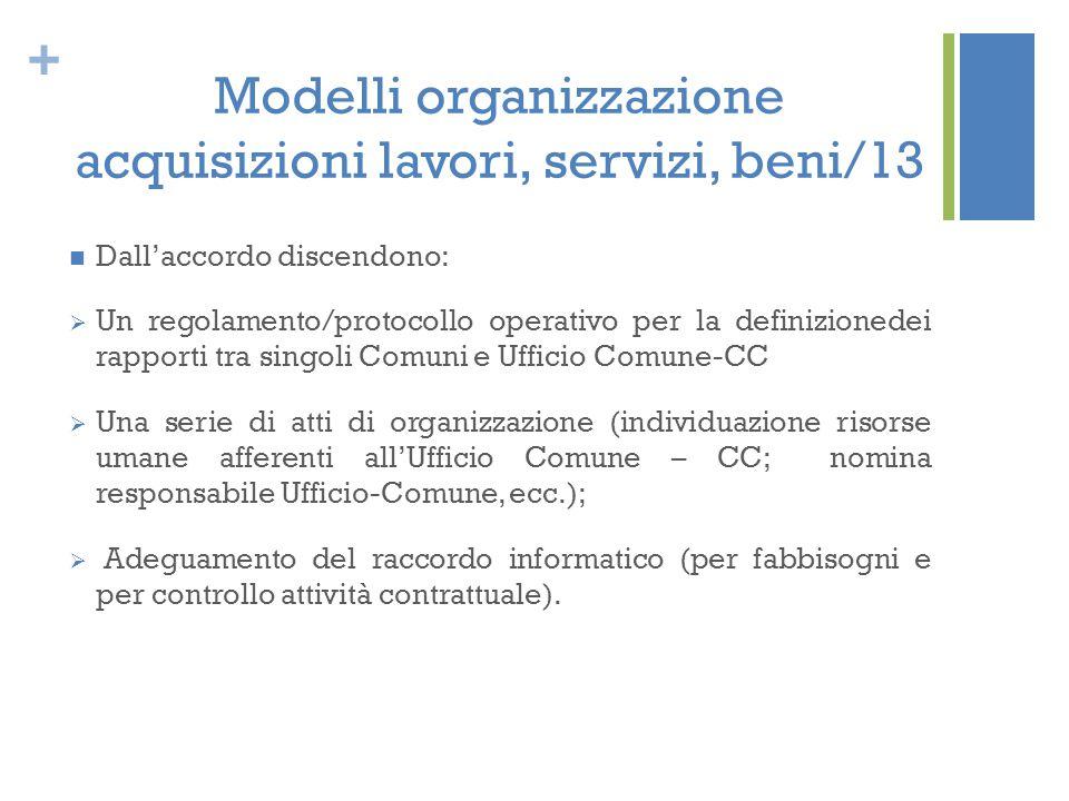 Modelli organizzazione acquisizioni lavori, servizi, beni/13