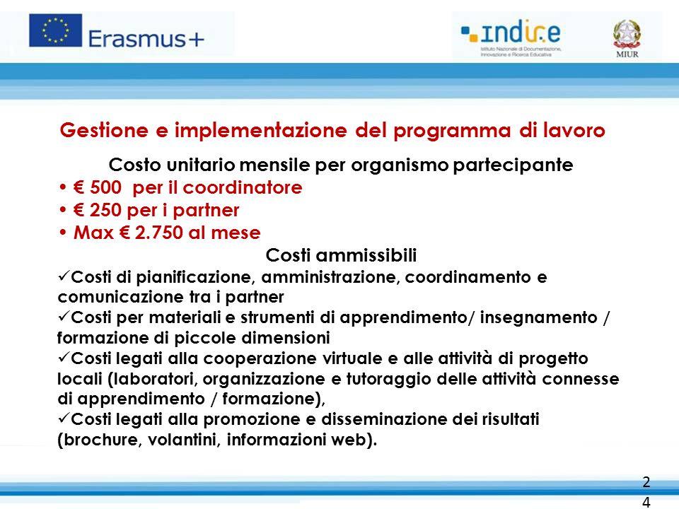 Gestione e implementazione del programma di lavoro