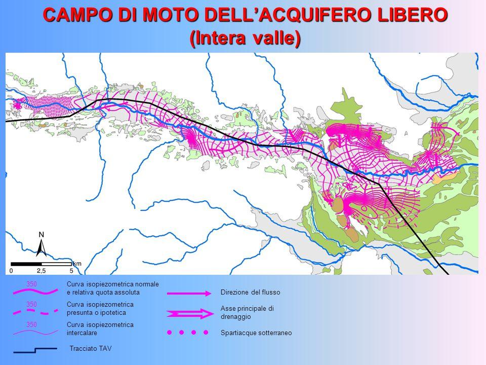 CAMPO DI MOTO DELL'ACQUIFERO LIBERO (Intera valle)