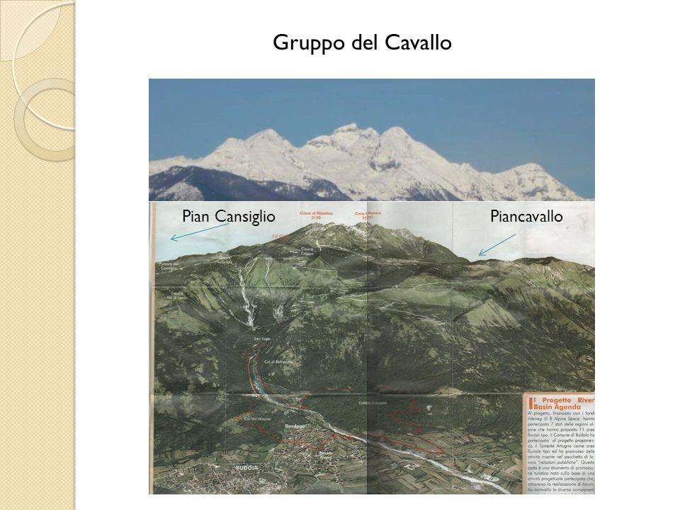 Gruppo del Cavallo Pian Cansiglio Piancavallo
