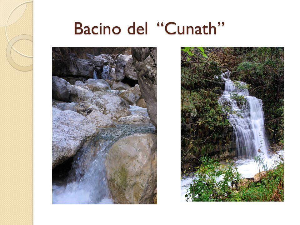 Bacino del Cunath