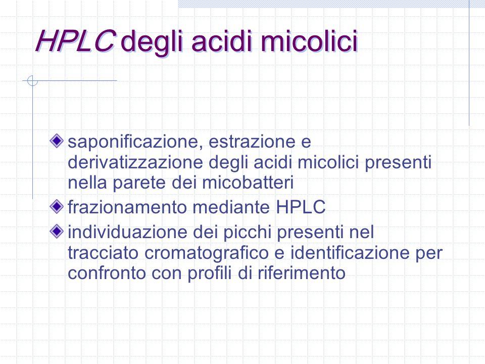 HPLC degli acidi micolici