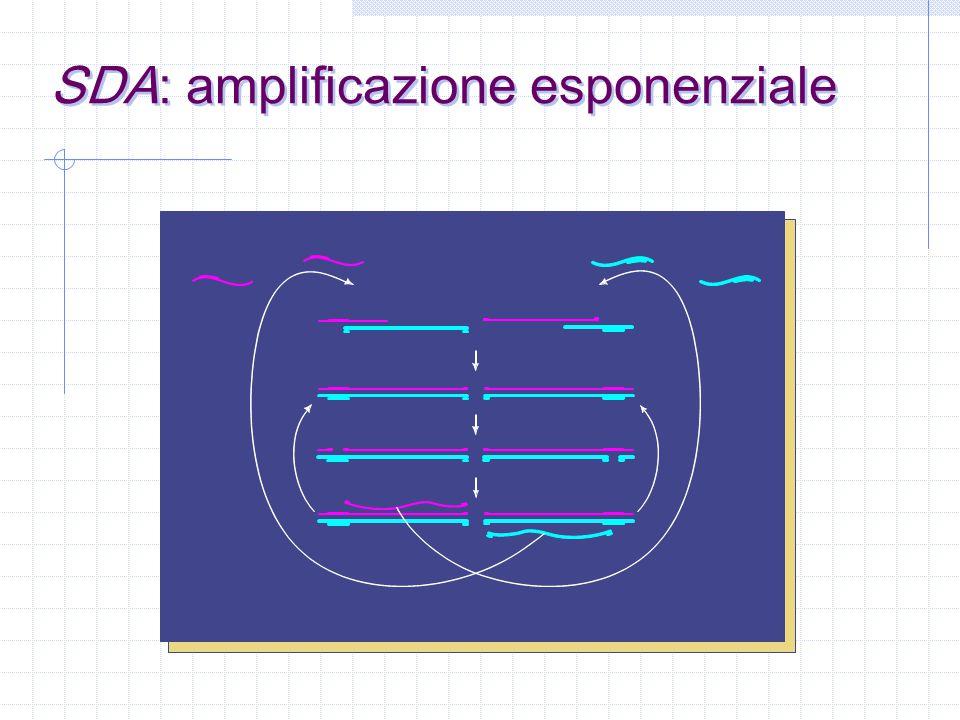 SDA: amplificazione esponenziale