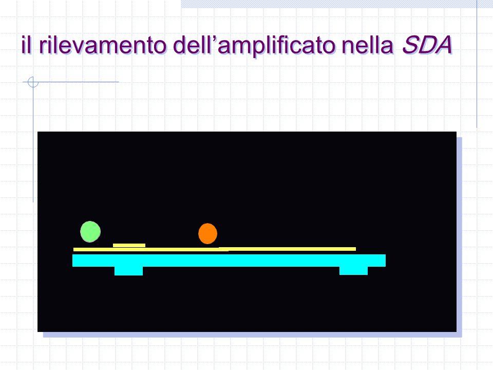 il rilevamento dell'amplificato nella SDA