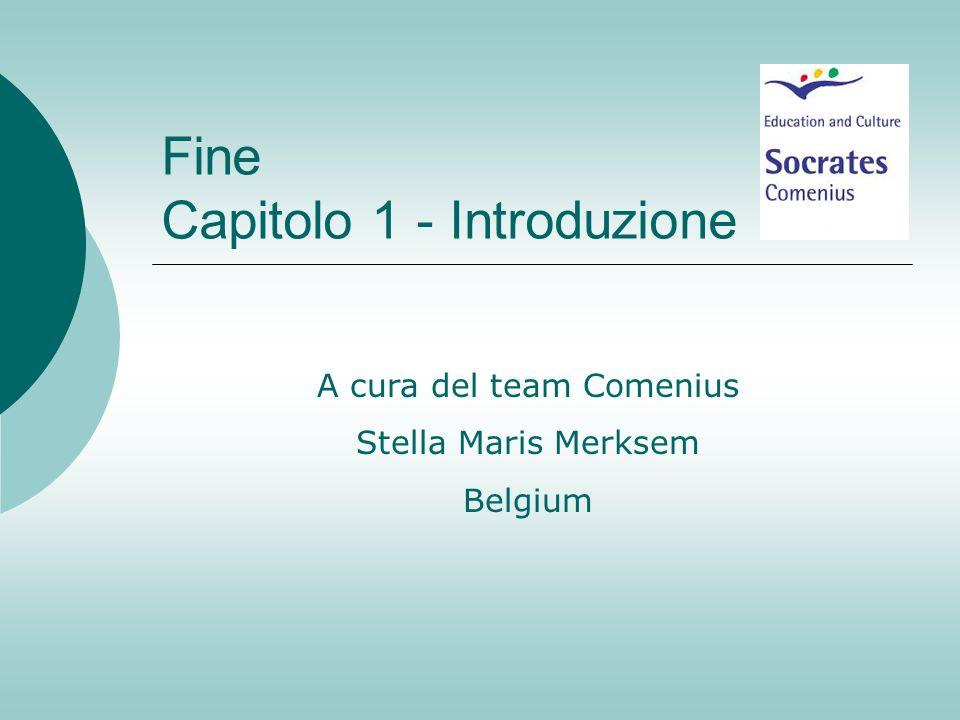 Fine Capitolo 1 - Introduzione