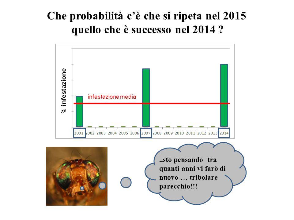 Che probabilità c'è che si ripeta nel 2015