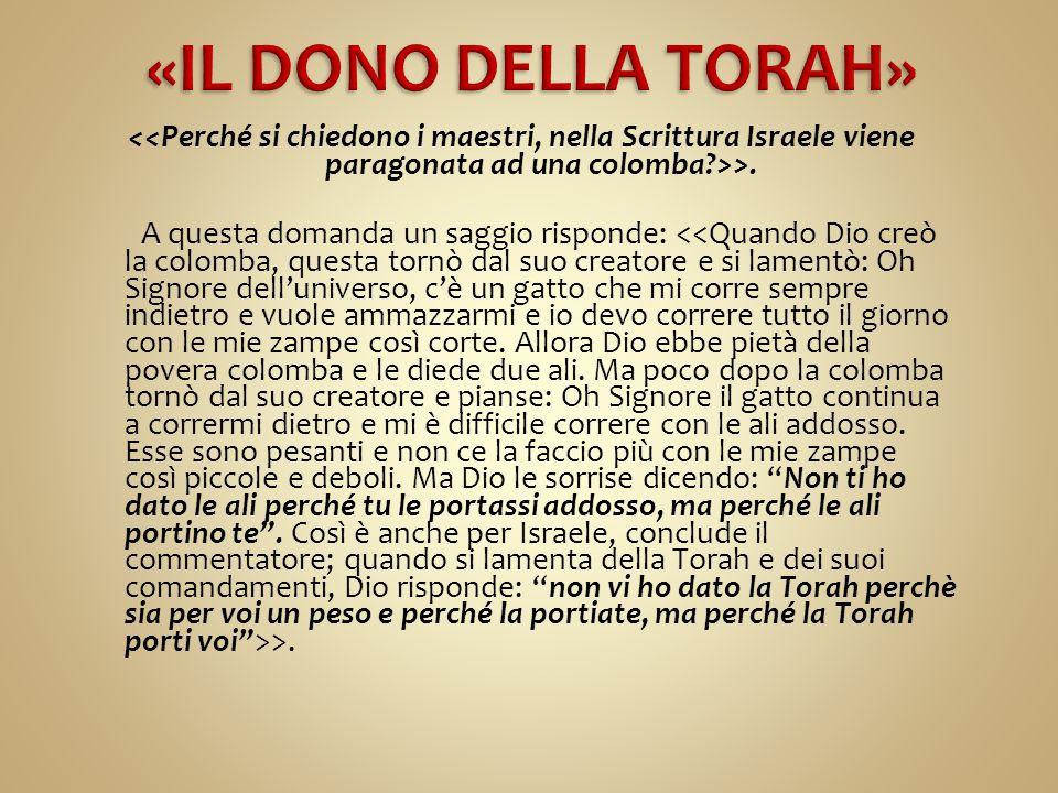 «IL DONO DELLA TORAH»