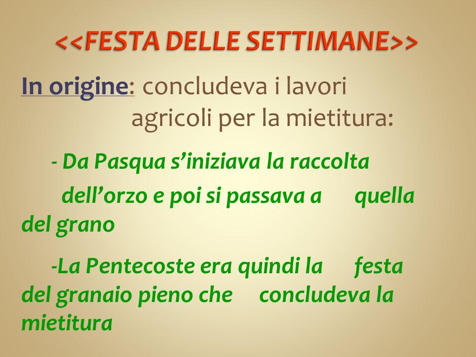 <<FESTA DELLE SETTIMANE>>