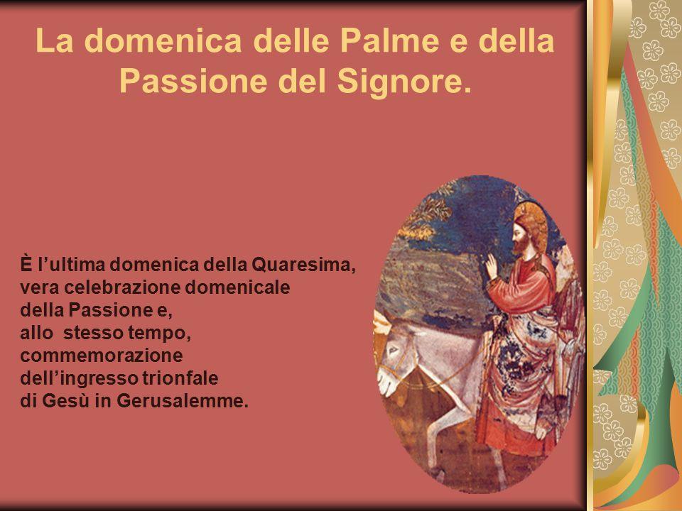 La domenica delle Palme e della Passione del Signore.